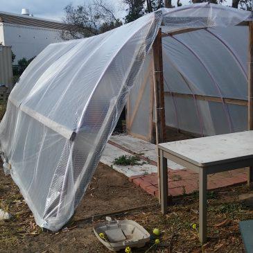 Greenhouse 2.0!