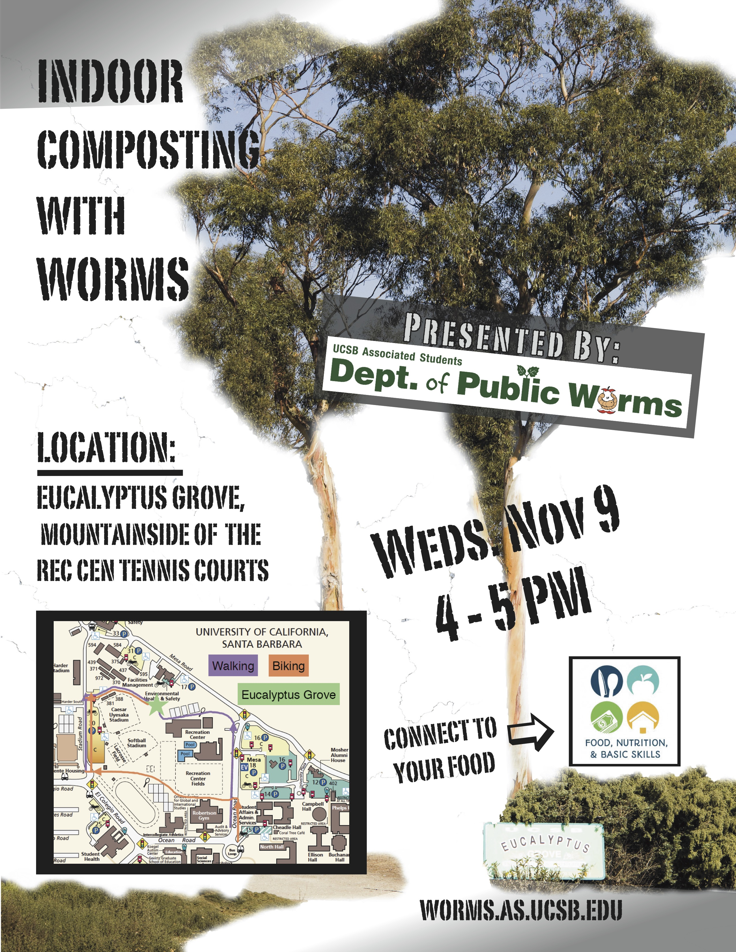 Indoor Composting – With Worms!