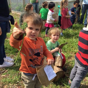 They May Be Preschoolers, But They're Learning Science Through Unique Gardening Class On South Coast